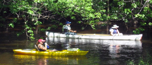 Canoeing on the Bark River